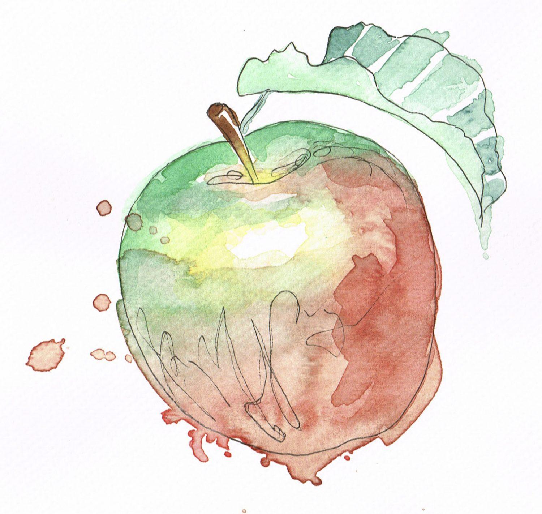 Eple av akvarell