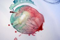 Rødt akvarell eple